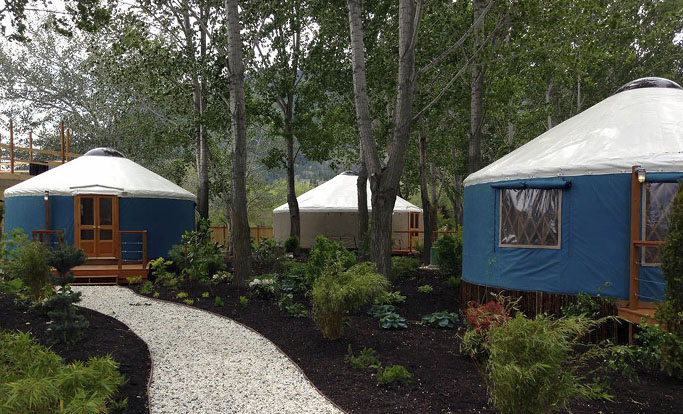 Yurt Campground with nice landscaping